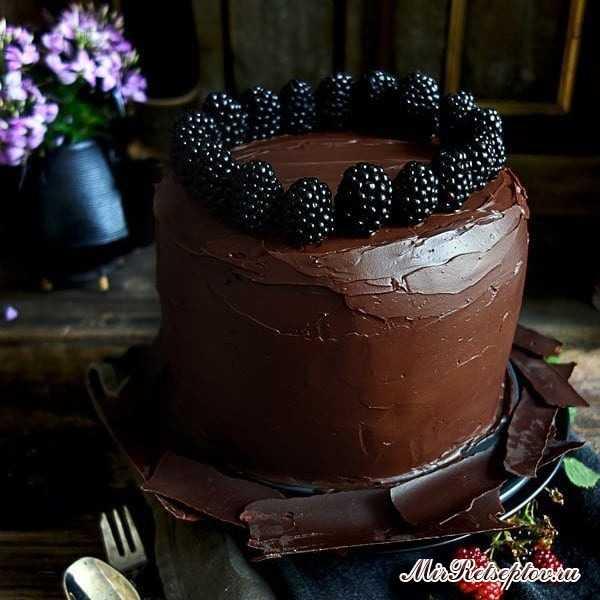 Бисквитный торт с ежевикой и шоколадом